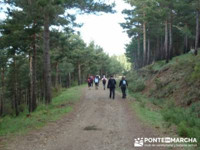 Ruta de Senderismo - Altos del Hontanar; granja de san ildefonso segovia
